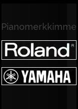 rolandyamaha4